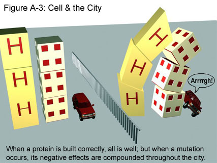 Fig A-3: Cell & the City