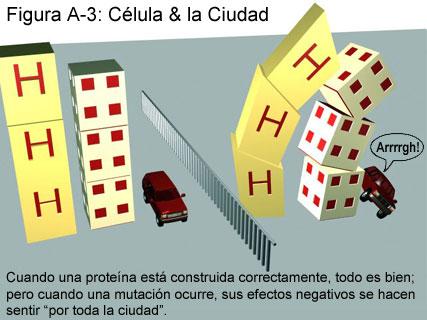Fig A-3: Célula & la Ciudad