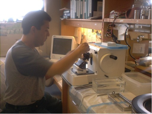 Fig AH-6: Researcher Alex Lloret prepares sections of transgenic mouse brains for experimentation.