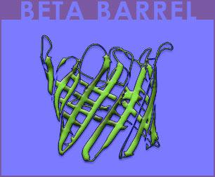 Fig P-16: Beta Barrel