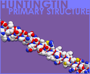 Fig P-19: Huntingtin Primary Structure